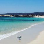 voyage aventure Australie